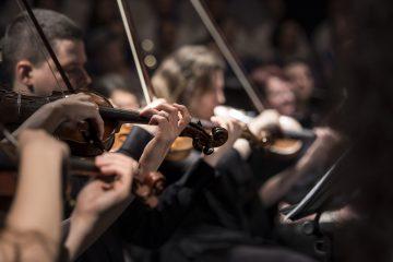 orkest, viool